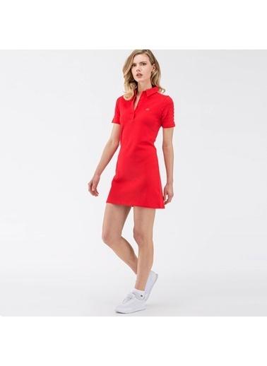 Yarım Kollu Kısa Elbise-Lacoste